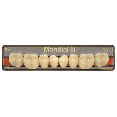 Mondial 8i-5 Denture Teeth