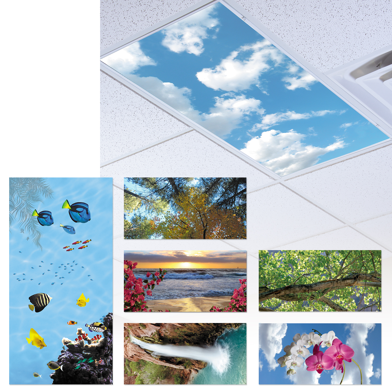Durastrong Sky-Scapes Light Panels