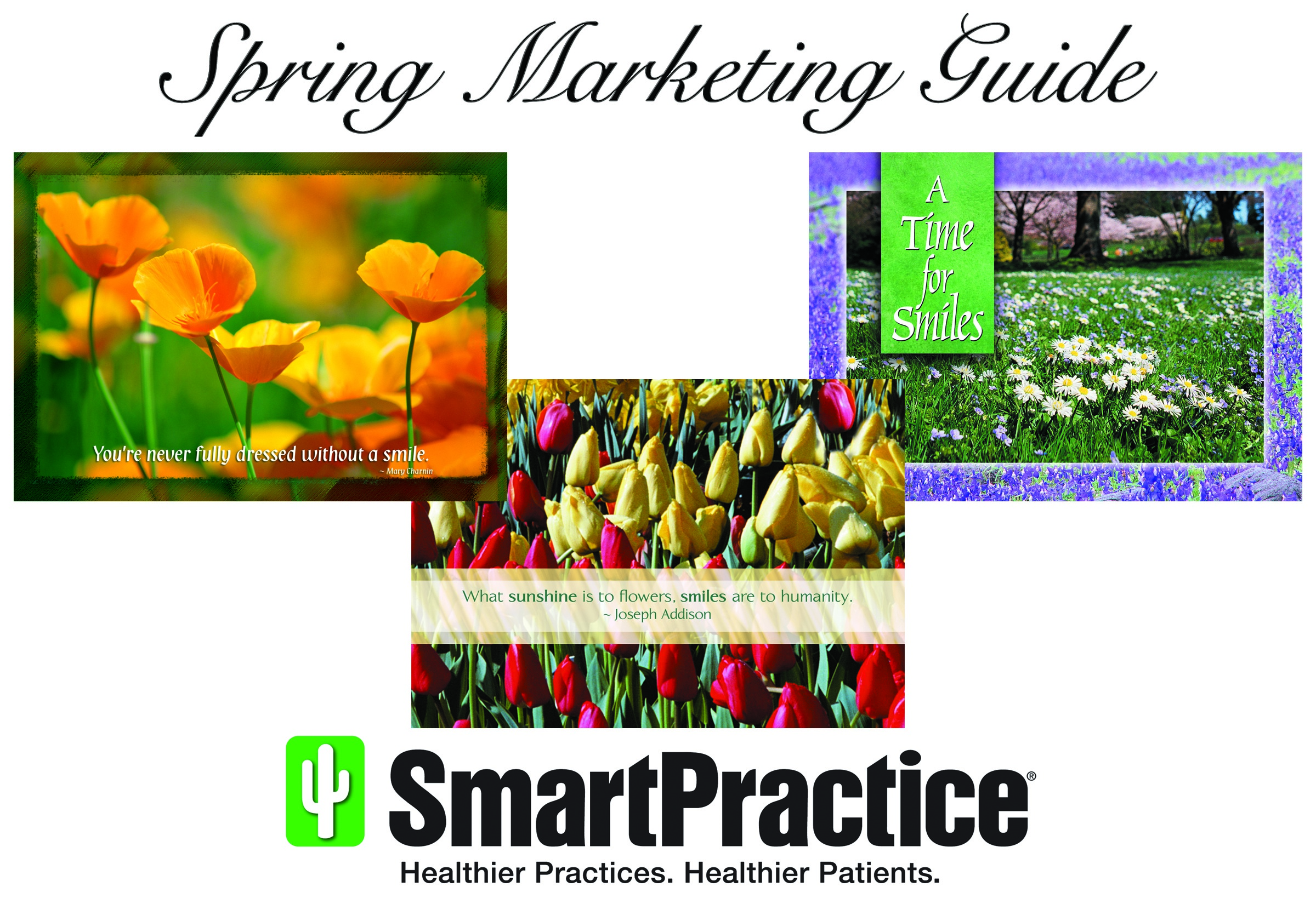 Spring Cleaning Dental Marketing Guide